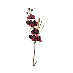 roseaux-orchidee-bordeaux